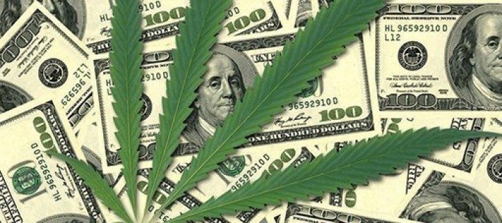 Investing in Pot for Profit: Is Cannabis the Next Dotcom Market?