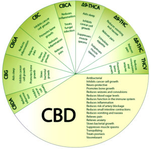 Chart showing many uses for medicinal marijuana.