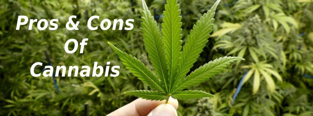 pros and cons of cannabis