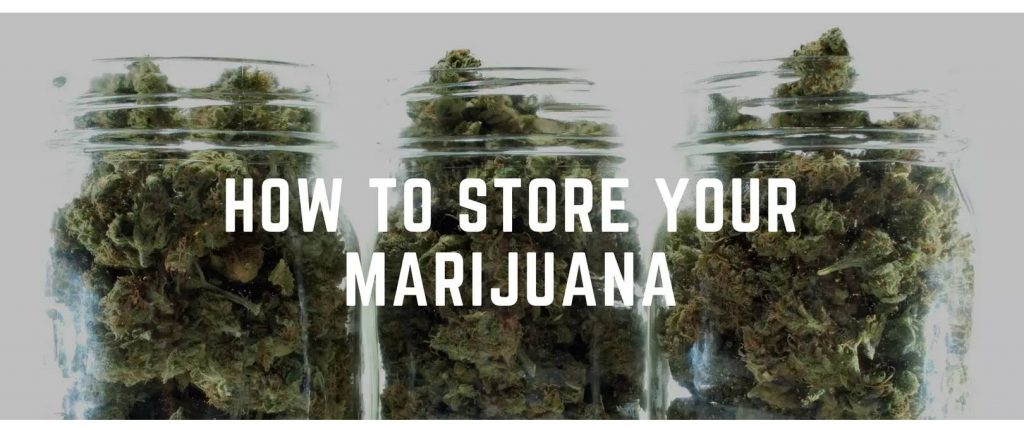 Best Way to Store Your Weed